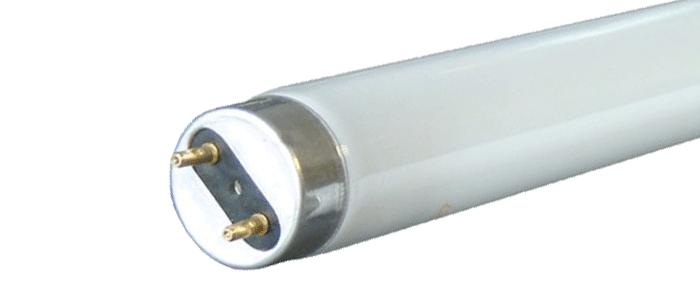 florocent-tubes-image-1