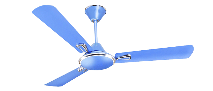 sealing-fan-image-3